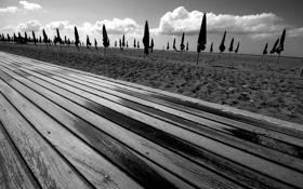 Обои песок, пляж, небо, ч/б, фото, зонты, доски