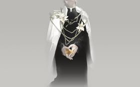 Картинка лилии, арт, священник, белые цветы, желтая лилия