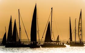 Обои небо, закат, озеро, люди, яхта, парус, блик