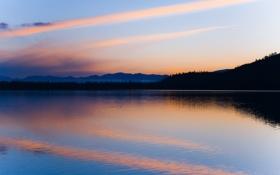 Картинка лес, небо, вода, облака, закат, отражение, вечер