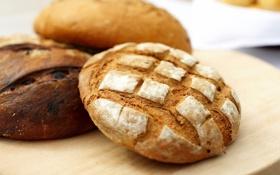 Обои серый, круглый, еда, хлеб, ржаной