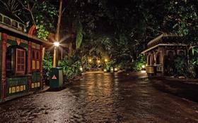 Картинка ночь, огни, парк, улица, фонари, Калифорния, США