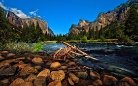 Обои лес, горы, природа, река, камни