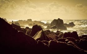 Картинка море, волны, небо, вода, облака, птицы, скала