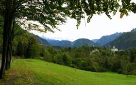 Картинка Природа, Фото, Горы, Трава, Деревья, Лес, Лето