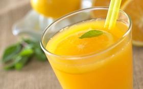 Обои апельсин, трубочка, мята, апельсиновый сок