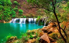 Обои деревья, река, камни, поток, склон