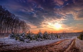 Обои зима, дорога, солнце, облака, снег, деревья, закат