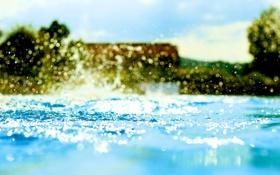 Картинка капли, Вода, Деревья, Бассейн, Bokeh