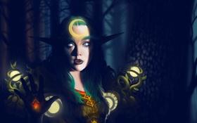 Обои эльф, wow, world of warcraft, night elf, друид, druid, ночная эльфийка