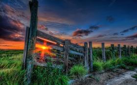 Картинка небо, трава, солнце, облака, лучи, закат, природа