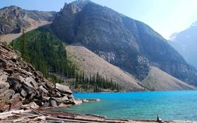 Картинка деревья, горы, озеро, камни, скалы, Alberta, Canada