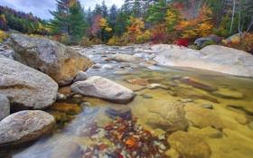 Обои осень, лес, небо, деревья, горы, река, камни