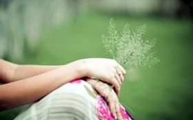 Обои девушка, фон, травы