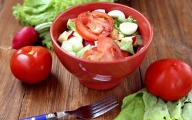 Картинка яйца, овощи, помидоры, салат, редис