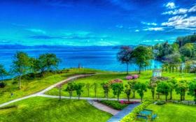 Обои трава, деревья, горы, небо, парк, озеро, цветы