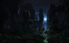 Картинка трава, птицы, ночь, природа, река, скалы, луна