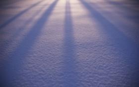 Обои зима, снег, природа, фон, widescreen, обои, блеск