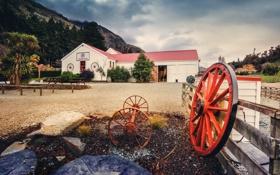 Картинка field, wheel, farm