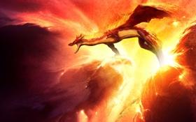 Обои огонь, вихри, в небе, дракон