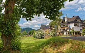 Картинка деревья, горы, природа, дома, Германия, городок, Ediger-Eller
