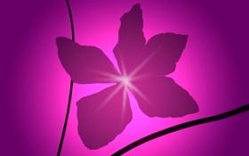 Обои цветок, свет, абстракция, краски, минимализм, лепестки