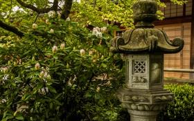 Картинка япония, каменный, фонарь, куст, зелень, листья, сад