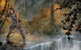 Обои лес, девушка, деревья, ручей, череп, Tomb Raider, Расхитительница гробниц