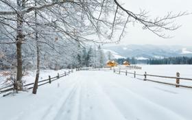 Картинка зима, дорога, лес, снег, деревья, горы, ветки