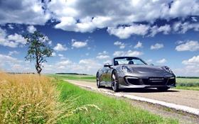 Картинка Porsche, Sky, Grass, Gemballa, Tuning, Cabriolet, 991