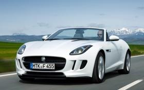 Обои дорога, белый, Jaguar, капот, ягуар, передок, 2013