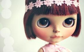 Обои кукла, повязка, игрушка, блики, взгляд