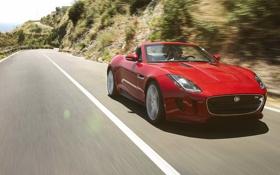 Обои красный, движение, ягуар, кабриолет, вид спереди, jaguar, равнины