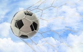 Обои soccer, goal, ball