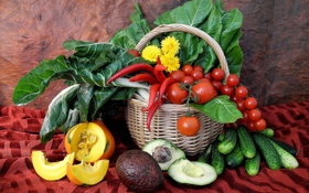 Обои тыква, натюрморт, одуванчики, корзинка, овощи, помидоры, огурцы