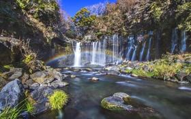 Обои лес, река, камни, водопад, радуга, джунгли