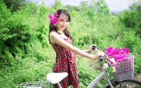 Обои цветы, велосипед, улыбка, восточная девушка
