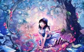 Картинка бабочки, цветы, гусеница, дерево, поляна, книги, арт