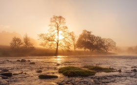 Картинка landscape, fog, sunrise, Mist, Peak District, Chatsworth