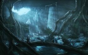 Картинка пещера, фонарь, посох, заброшенность, корни, озеро, человек