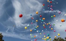 Картинка шарики, цветные, небо, воздушные, шары