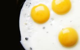 Обои завтрак, яичница, глазунья, жареное, белки, желтки