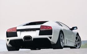Обои авто обои, тачки, Lamborghini, Murcilago LP640, машины