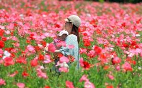 Обои поле, настроение, Love of mother, лето