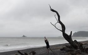 Картинка девушка, море, дерево