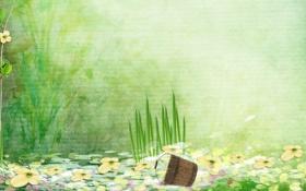 Обои ведро, трава, кувшинки, вода, цветы