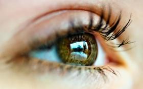 Картинка глаз, ресницы, отражение