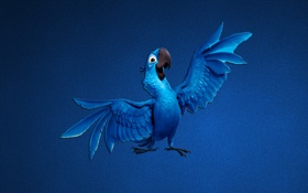 Обои синий, минимализм, попугай, рио, rio