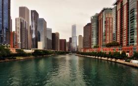 Картинка Река, Чикаго, Канал, Небоскребы, Здания, Америка, Chicago