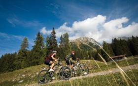 Обои настроение, спорт, Альпы, велосипедисты